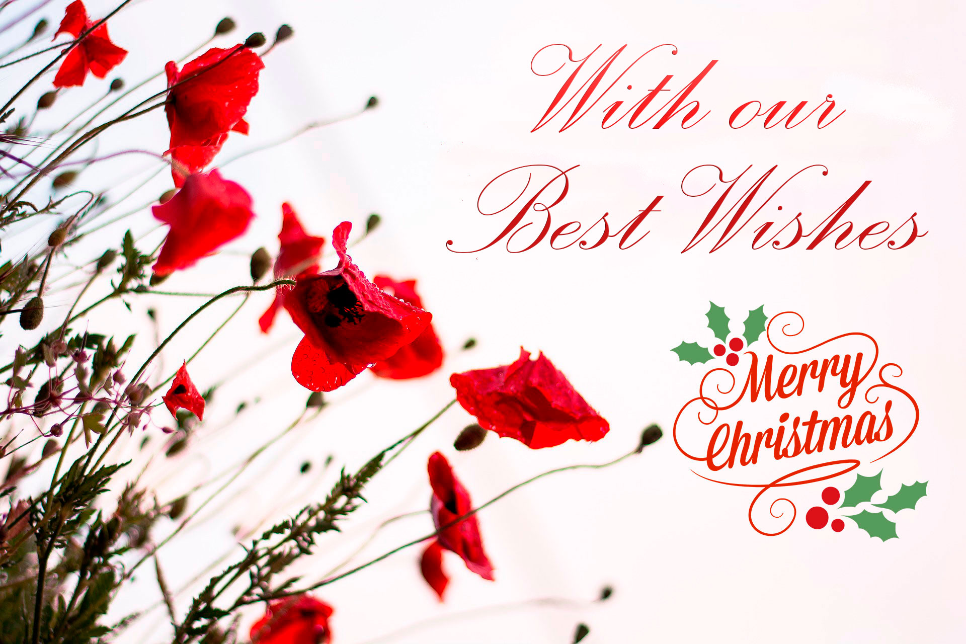 With our best wishes