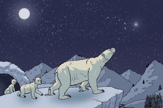 May the Bears and their Stars of Wonder and of Night guide us in 2021
